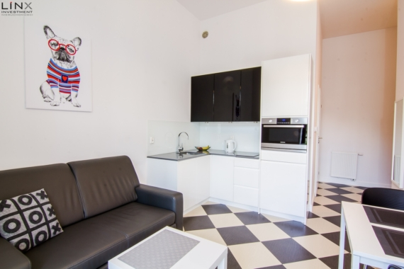apartment for rent Krakow (13)